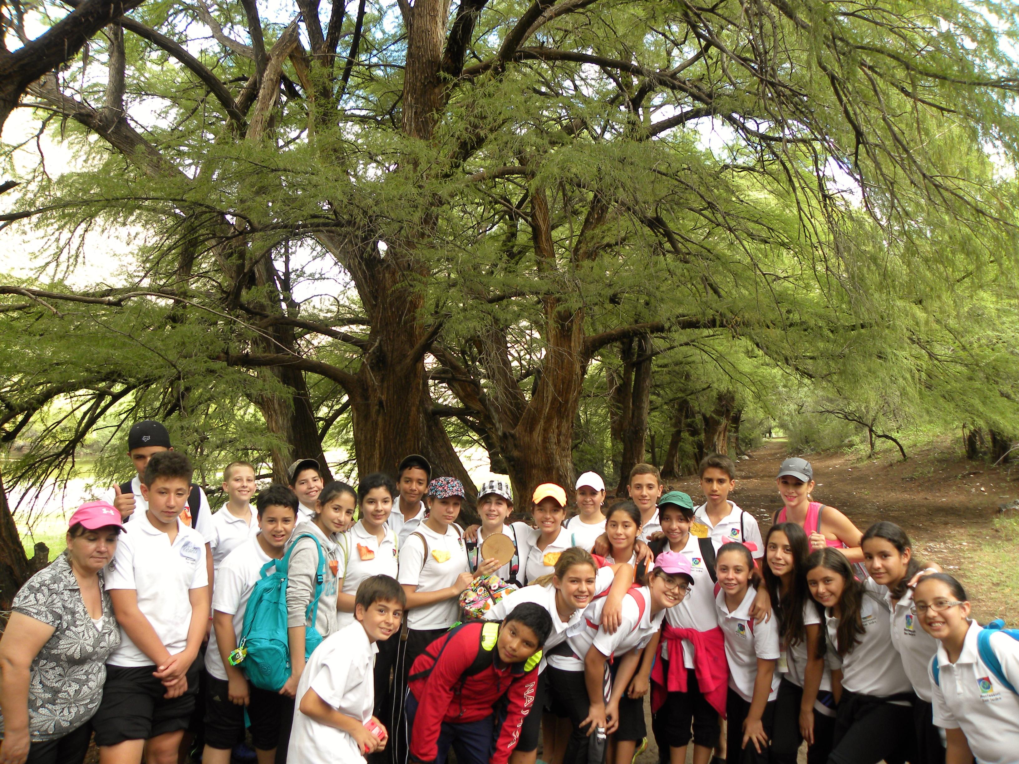 TIII Excursiones (23)