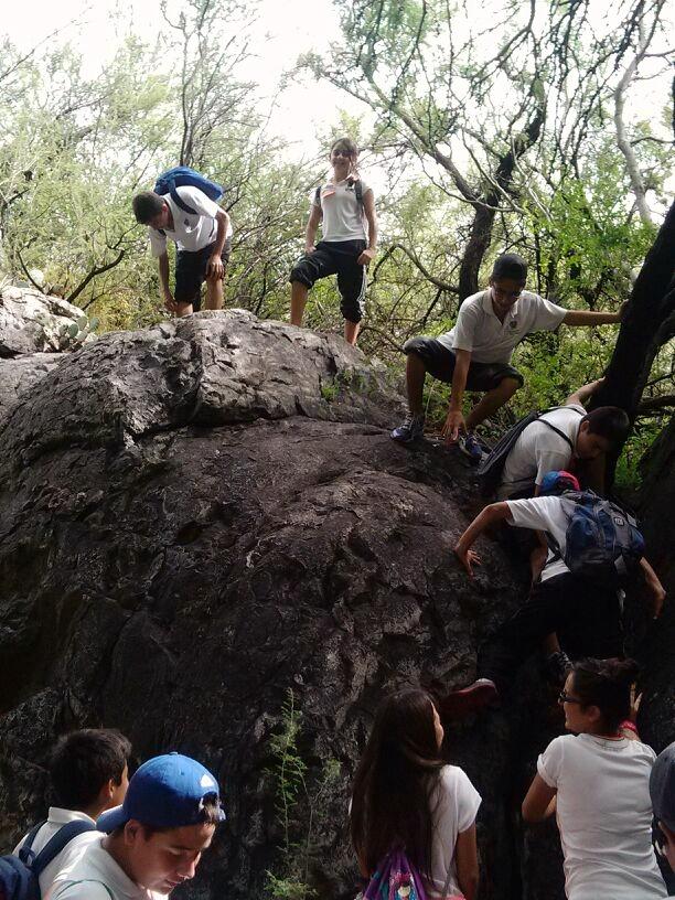 TIII Excursiones (12)