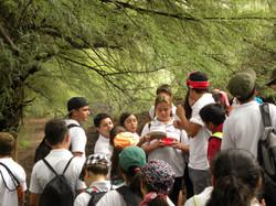 TIII Excursiones (19)