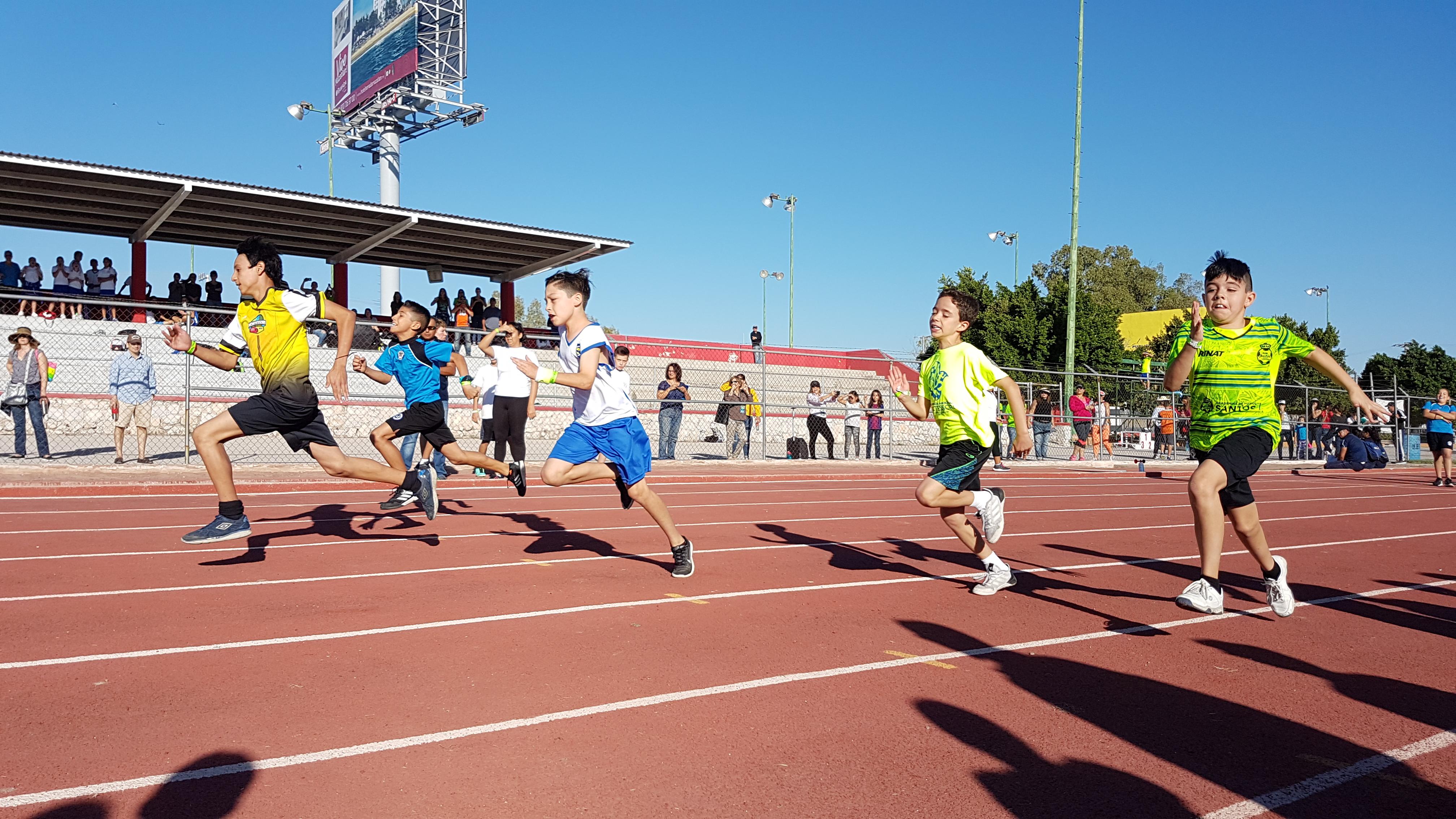 TIII Deportes (1)