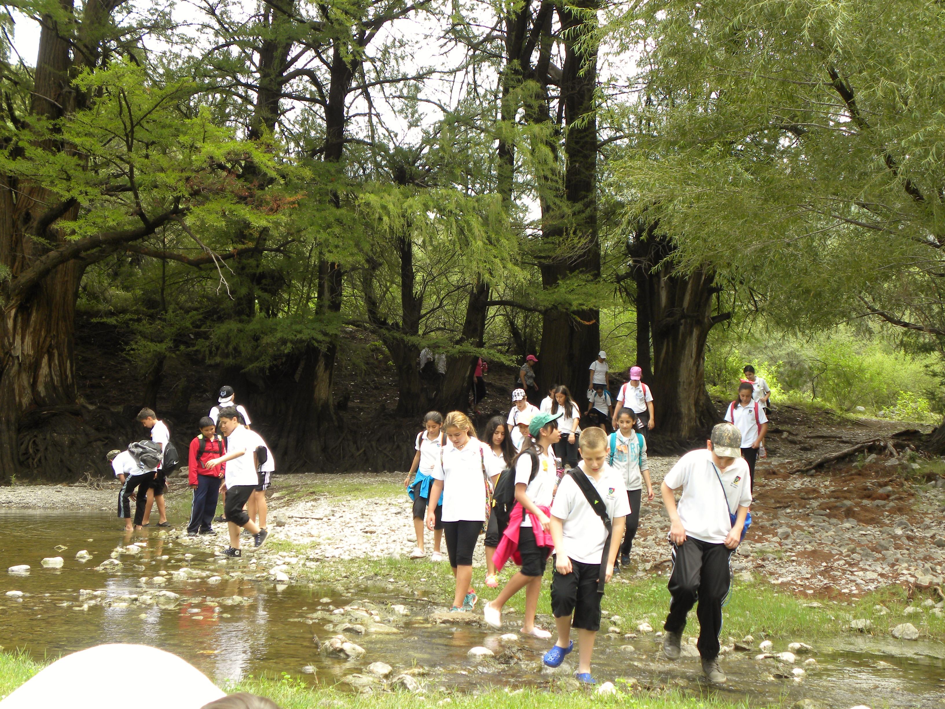 TIII Excursiones (24)