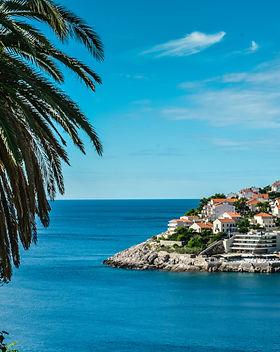 Dubrovnikdayviewtree.jpg