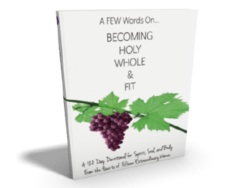 A FEW Words on Becoming HOLY, WHOLE & FIT book