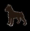 Brown-Boxer-Dog-backwasrds.png