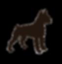 Brown-Boxer-Dog.png