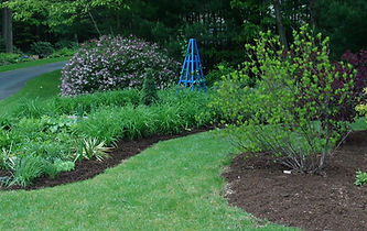 A thin layer of mulch helps prevent weed