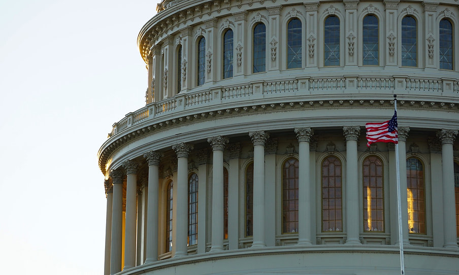 The dome of the United States Capitol Building in Washington, DC_edited_edited.jpg