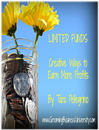 Limited Funds eBook and Templates