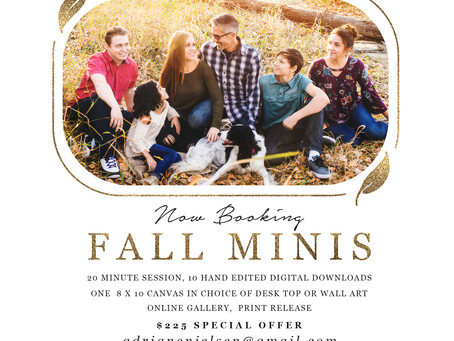 FALL OUTDOOR  MINIS