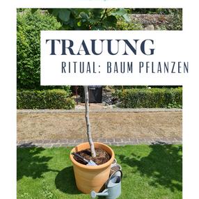 Trauritual -Baum pflanzen