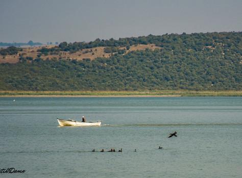 Gölyazı - Assos - Foça Ege Turu