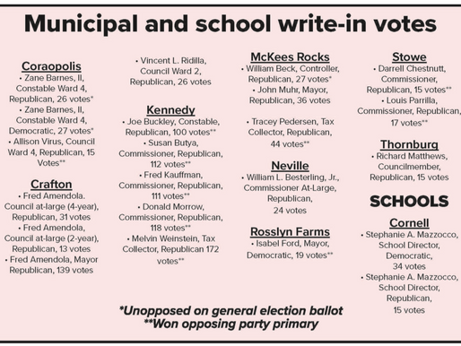 ELECTIONS: Write-in candidates confirmed for local elections