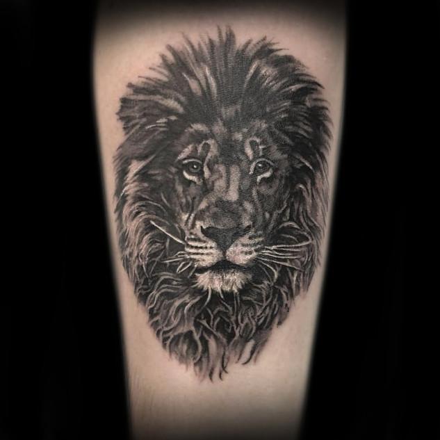 small lion.jpg