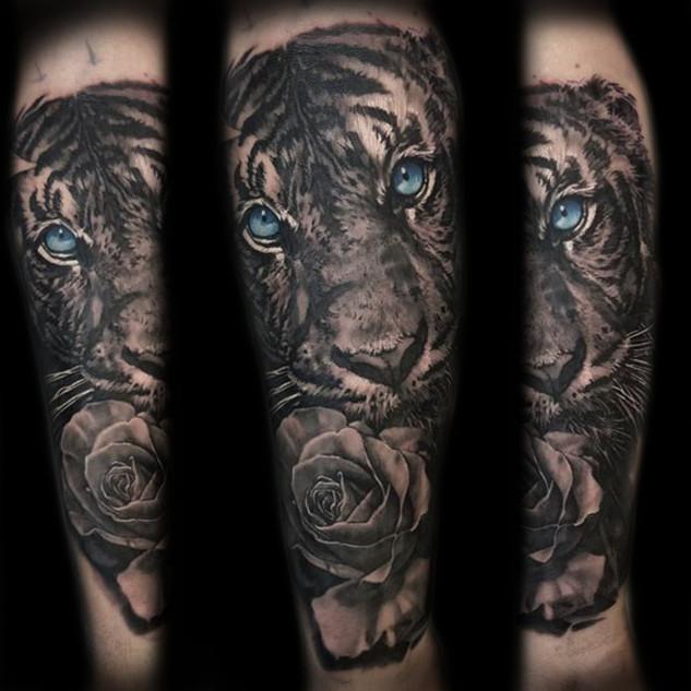 tiger_blueeyes2.jpg