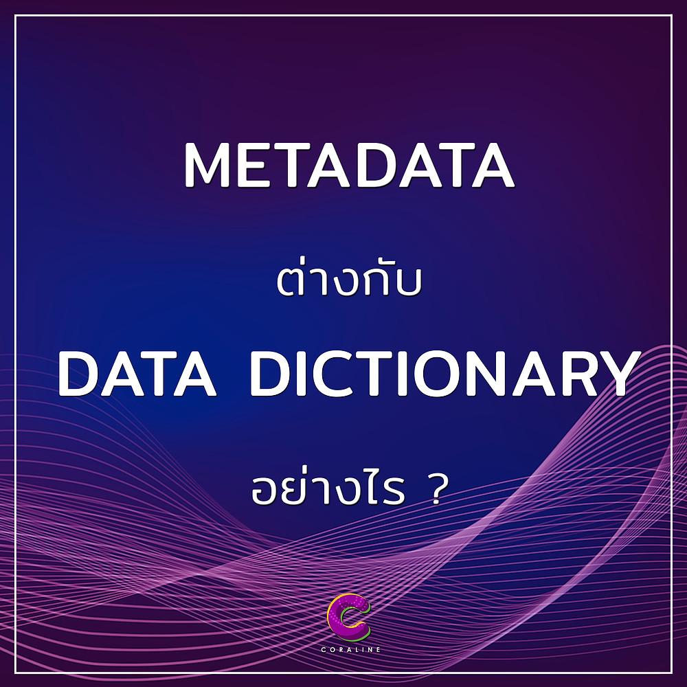 Metadata vs data dictionary