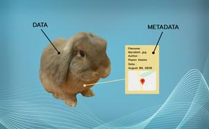 Metadata ต่างกับ Data Dictionary อย่างไร?