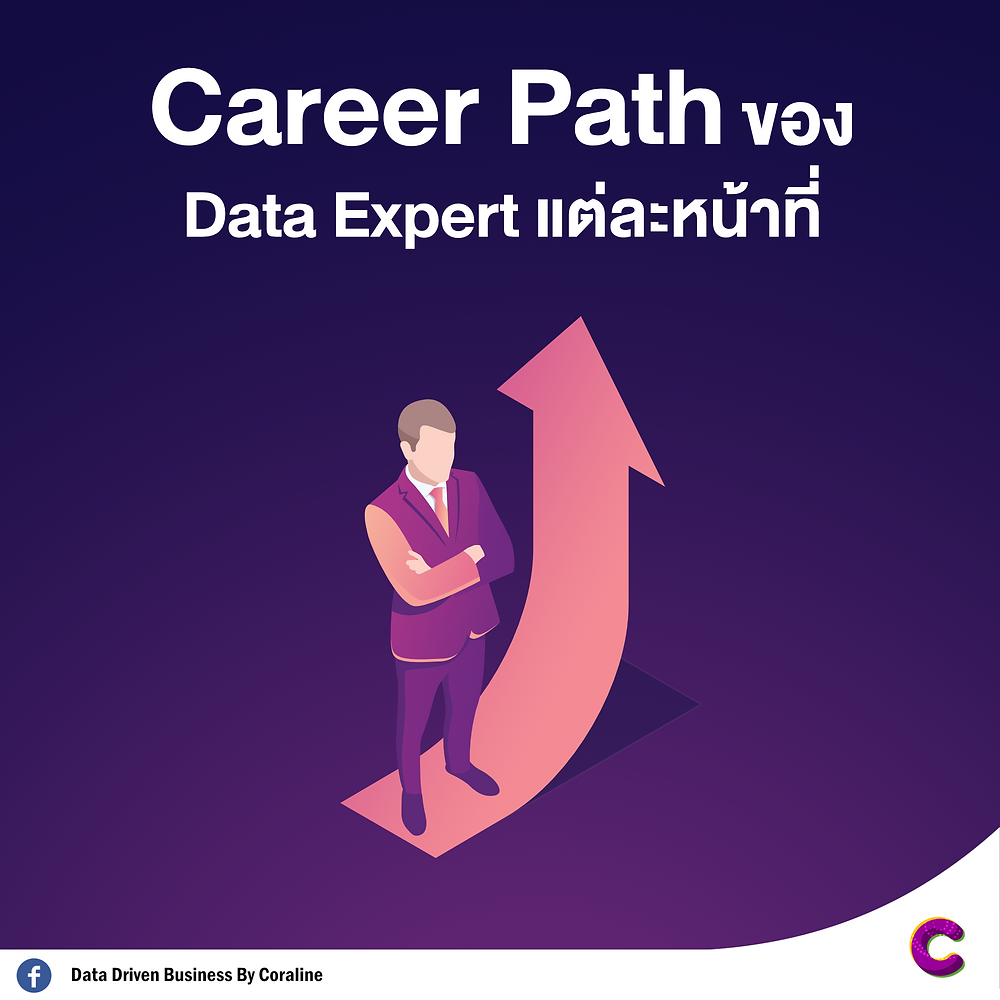 Career Path of Data Expert