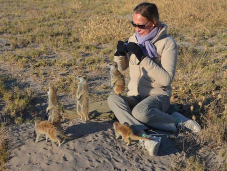 Bei den Erdmännchen in Botswana