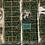 Thumbnail: PUTNAM COUNTY, FL/ 23-08-24-5100-0210-0130