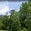 Thumbnail: PUTNAM COUNTY, FL / 11-11-24-4089-0010-0080
