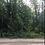 Thumbnail: ALPENA COUNTY, MI/ APN#: 043-095-000-294-00