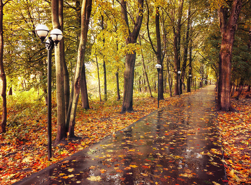 Autumn: Summon Your Shadow Side