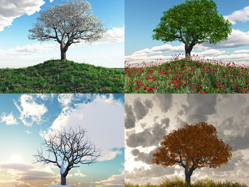 Surviving the Seasons