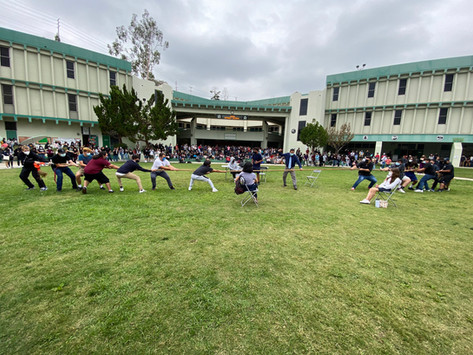 Wednesday on the quad: tug of war gone wrong