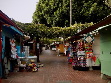 Dia De Los Muertos: The celebration of life and love