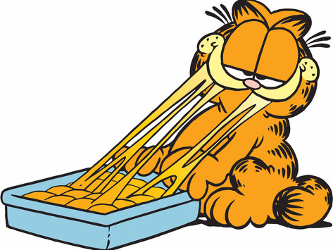 Official Review of Garfield's Lasagna