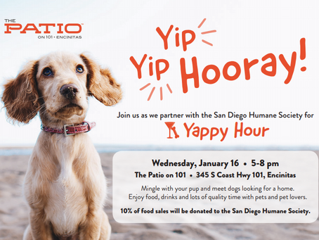 The Patio on 101 to host a Yappy Hour