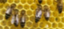 F&B_03-19_Sci&Tech.jpg