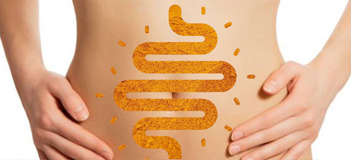 New research on curcumin and the 'brain in your gut'