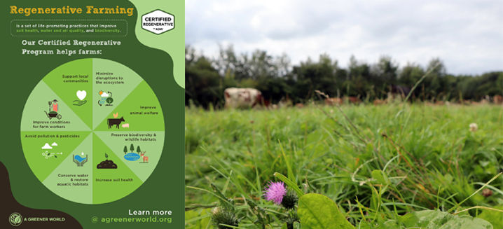 AGW selects 50 farms globally for new regenerative agri certification pilot