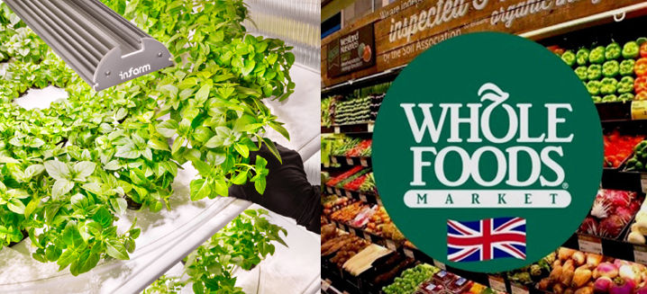 Whole Foods Market and Infarm tie-up brings 'vertical farms' in-store