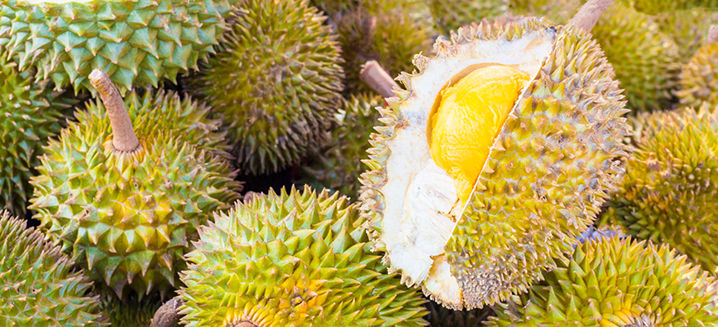 Malaysia soon set to start durian export