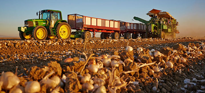 Olam delivers improved financial perform