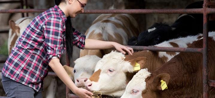 Winners announced for Good Farm Animal W