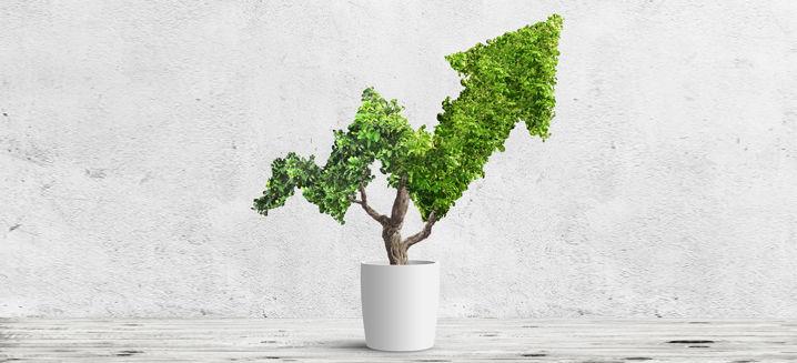 Biden regulatory moves will make ESG the 'ultimate investment megatrend'