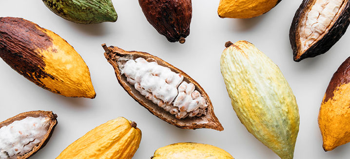 World's_top_cocoa-producing_countries_an