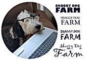 Shaggy Dog Farm with glasses 2BB jb.jpg