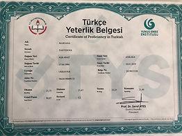 Türkçe Yeterlik Belgesi - уровень C2.jpg
