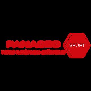 panaceo_Zeichenfläche_1.png