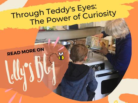 Through Teddy's Eyes: The Power of Curiosity