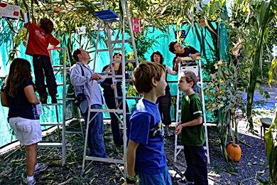 Children Building a Sukkah