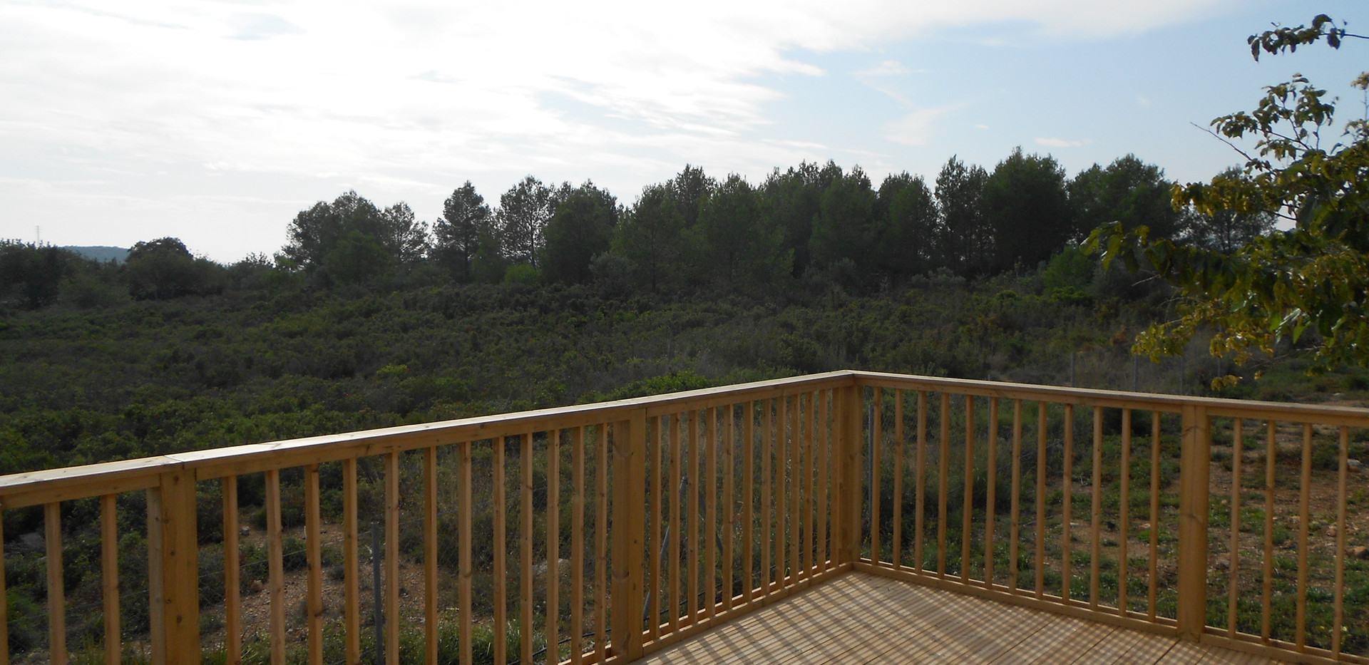 decking view.JPG