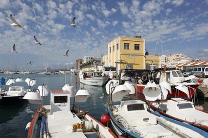 Port-de-Vinaròs.jpg