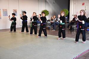 Kung Fu kinderen les