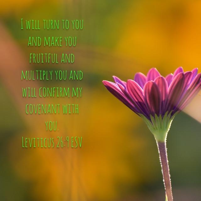 Leviticus 26:9