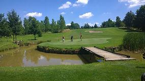 girasoli_golf_01.jpg